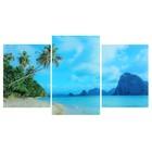 """Модульная картина на стекле """"Пальмы на берегу"""" 2-30х40, 30х50см (90х50см)"""