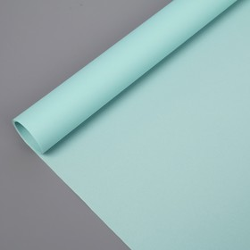 Штора рулонная 60х160 см 'Эконом', цвет светло-зеленый Ош