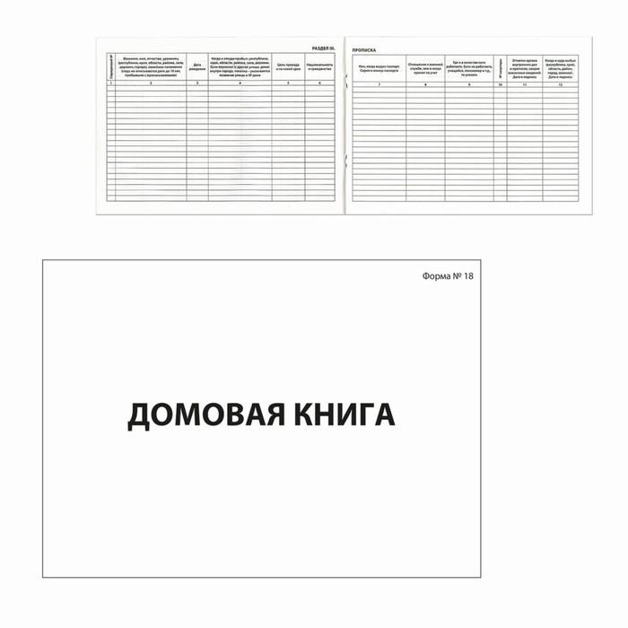 Книга домовая №18, А4, 80 листов BRAUBERG, картонная обложка, блок офсет