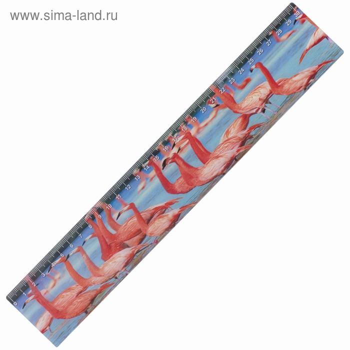 Линейка 30 см 3D BRAUBERG Фламинго, европодвес 210587