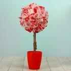 Топиарий «Заря», бело-красный, ручная работа, 25 см, микс
