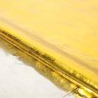 "Плёнка металлизированная ""Цветы"", золото, 70 х 100 см - фото 8442581"