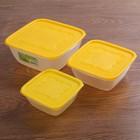 """Набор контейнеров пищевых для СВЧ """"Пикник"""", 3 шт: 500 мл, 1 л, 2 л"""