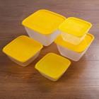 """Набор контейнеров пищевых для СВЧ """"Пикник"""", 5 шт: 500 мл, 700 мл, 1 л, 1,5 л, 3 л"""