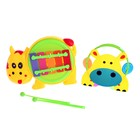"""A set of musical instruments """"Hippo"""", 2 items"""