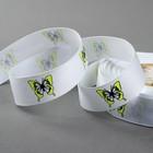 Лента репсовая «Бабочки», 25 мм, 22 ± 1 м, цвет белый/жёлтый №001 - фото 392203