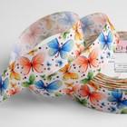 Лента репсовая «Бабочки», 25 мм, 18 ± 1 м, разноцветная