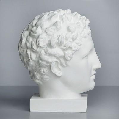 Гипсовая фигура, голова Гермеса «Мастерская Экорше», 23.5 х 28 х 36 см