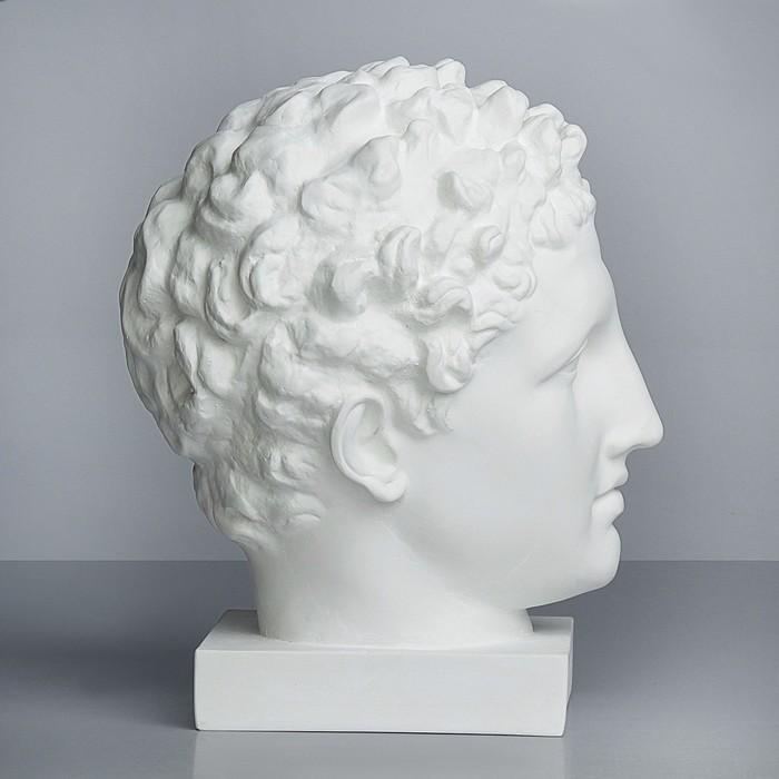 Гипсовая фигура, Голова Гермеса «Мастерская Экорше», 23.5х28х36 см