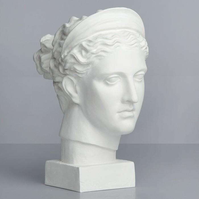 Гипсовая фигура, Голова Дианы «Мастерская Экорше», 20х34х37 см