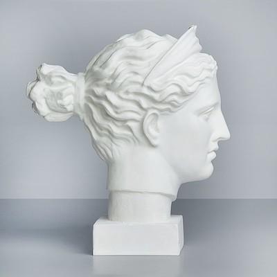 Гипсовая фигура, голова Дианы «Мастерская Экорше», 20 х 34 х 37 см