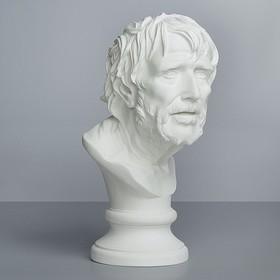Гипсовая фигура Академическая: Бюст Сенеки, 22,5 х 26 х 47 см