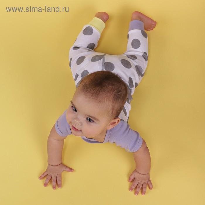Ползунки детские (2 шт.), рост 74 см, принт горошек 90011