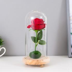 """Ночник """"Колба с алой розой"""" LED от батареек 3ААА 19,5х9,5х9,5 см"""