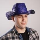 """Карнавальная шляпа """"Ковбой"""", цвет синий"""