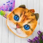 "Рюкзак детский ""Котёнок"", 24 х 24 см"