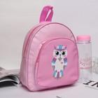 """Рюкзак детский """"Сова"""", с бутылкой для воды 500 мл, цвет розовый"""