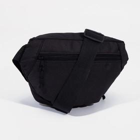 Сумка поясная на молнии, 1 отдел, 2 наружных кармана, регулируемый ремень, цвет чёрный - фото 65866