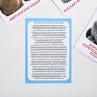 Обучающие карточки по методике Г. Домана «Кошки», 10 карт, А6 - фото 105496637