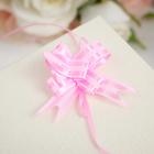 Бант- бабочка №1,2 простой с двумя полосами, розовый