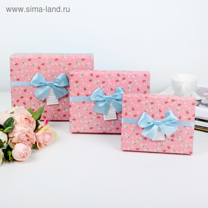 Набор коробок 3в1, 24 х 19 х 8 - 18 х 14 х 5 см