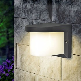 Светильник Elektrostandard садово-парковый, 1х60Вт, E27, IP54, настенный, Techno 1544 черный