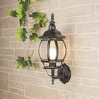 Светильник Elektrostandard садово-парковый, 100Вт, E27, IP33, настенный, 1001U черное золото