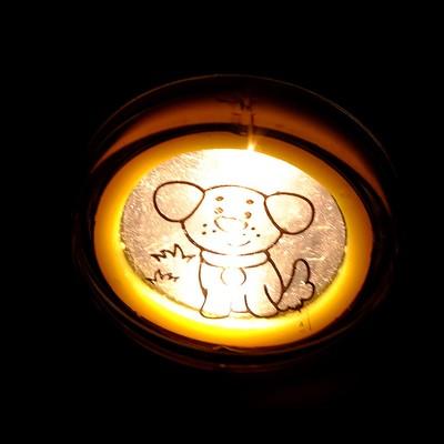 Проектор-фонарик 2 в 1 «Весёлые животные»