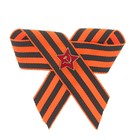 """Brooch """"Victory"""" bow to the star , clasp types MIX"""