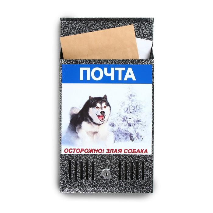 Ящик почтовый с замком, вертикальный, «Фото», МИКС, серебристый