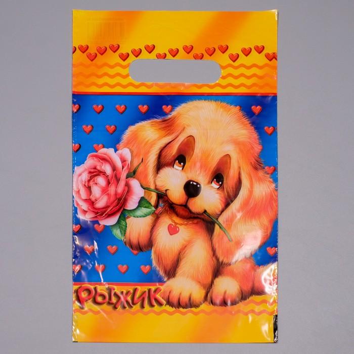"""Пакет """"Рыжик"""", полиэтиленовый с вырубной ручкой, 20 х 30 см, 30 мкм - фото 8443361"""