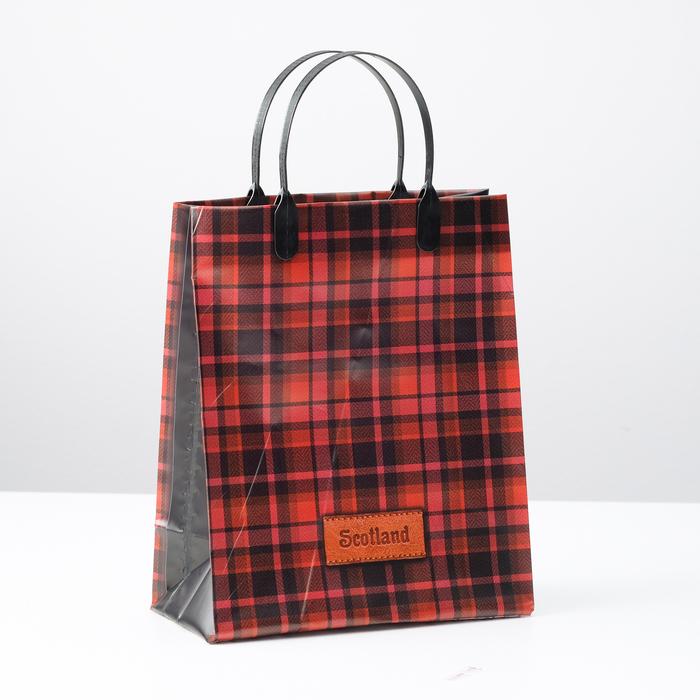 """Пакет """"Шотландия"""", мягкий пластик, 23 х 27 см, 150 мкм - фото 8443370"""