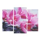 """Модульная картина """"Фиолетовая орхидея"""" 25*50 - 2 части, 30*60,  60*80 см - фото 8443492"""
