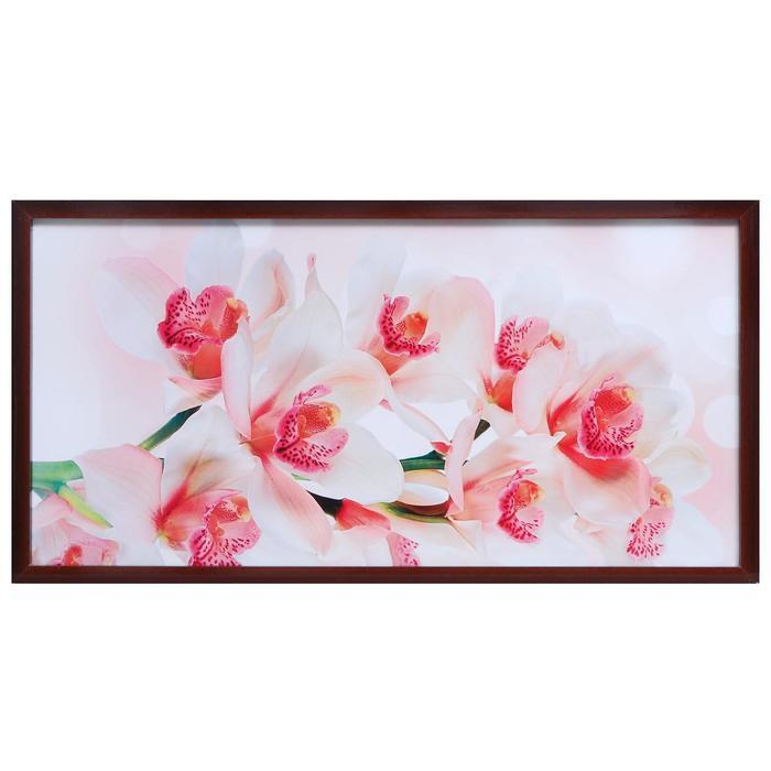 """Картина """"Красивая орхидея"""""""