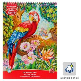 Альбом для рисования А4, 20 листов, на гребне, ErichKrause ArtBerry «Попугай»