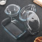 Набор посуды для СВЧ, 5 предметов: кастрюля 1,5 л, утятница 1,7 л, форма прямоугольная 33,5х19,3х7 см