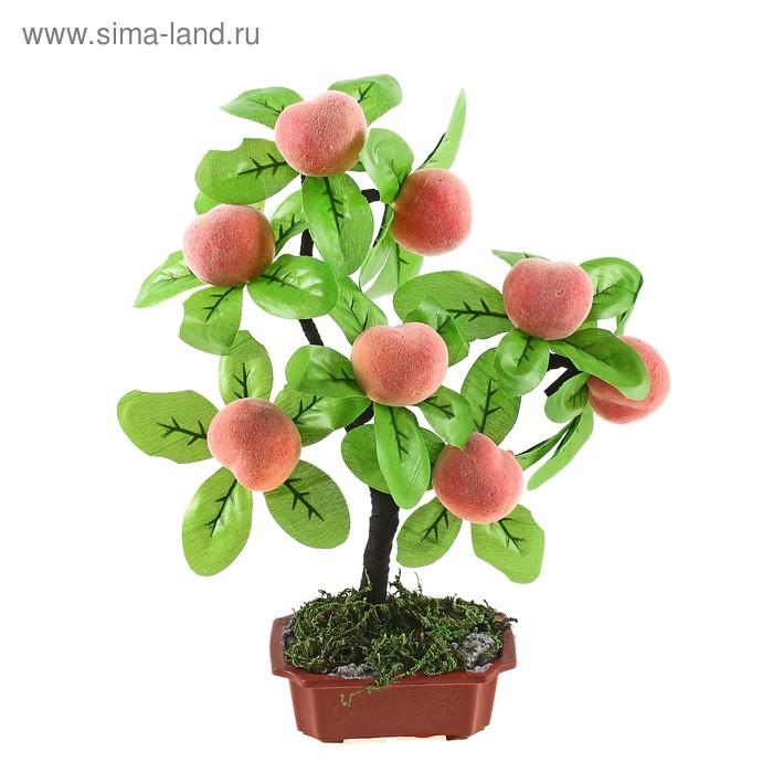 """Бонсай """"Персик"""" 8 плодов"""