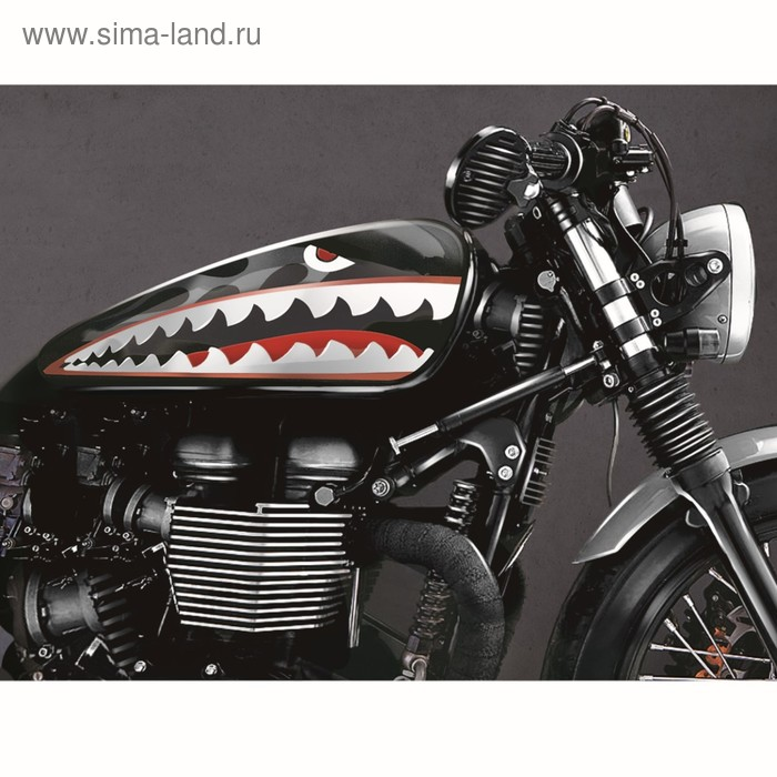 "Набор наклеек на мотоцикл ""Shark"", 2 шт."