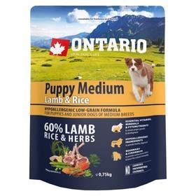 Сухой корм Ontario для щенков, ягненок и рис, 750 г.