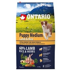 Сухой корм Ontario для щенков, ягненок и рис, 6,5 кг.