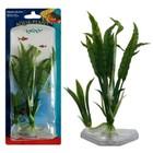 Растение PENN-PLAXFLOWERING CRYPT, 22см, зеленое