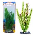 Растение-композиция PENN-PLAX CLUB MOSS-BLOOMING LUDWIGIA, 20см