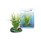 Растение Fauna INT CAULERPA, 7см, с грузом, бело-зеленое