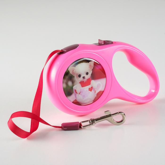 """Рулетка с принтом """"Милашка"""", 3 м, вес животного до 12 кг, розовая"""