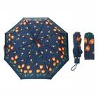 Зонт механический, R=50см, №4 110