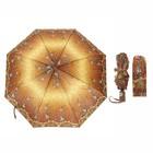 Зонт автоматический, R=50см, №4 23814