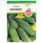 """Семена Огурец """"Феникс"""", пчёлоопыляемый, 10 шт"""