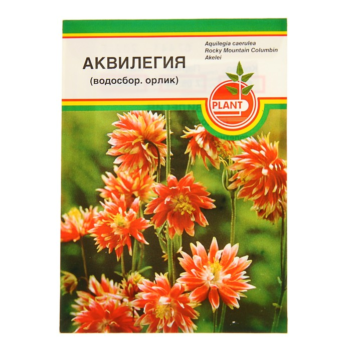"""Семена """"Аквилегия"""" 0,02 гр"""