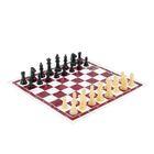 """Игра настольная """"Шахматы"""", в пакете, бело-коричневая доска"""