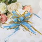 Бант-бабочка №2.5 - фото 8443870